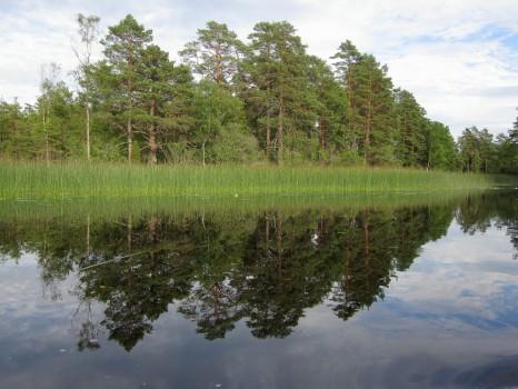 6 IMG_4630 På södra sidan Krängsebron vid Åhult