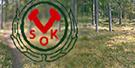 140114_vsok_135_rullande