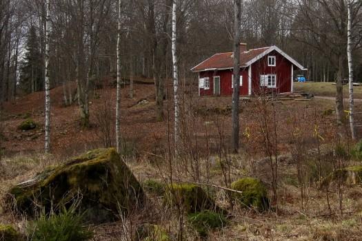 2 IMG_0487 Lundsbo bokskog torpet Kloen