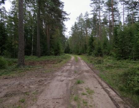4 IMG_1469 Mot Östersjön