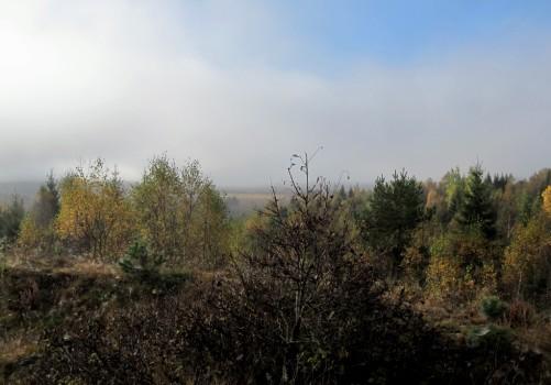 1 IMG_1390 Dimman lättar över ljungheden från ett av forten för träning av FN-soldater inför deras utlandstjänst