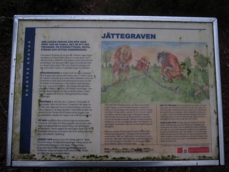 2 IMG_1752 Boeryds gravar och jattegraven