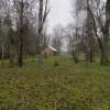2 IMG_1847
