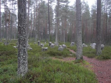 3 IMG_1750 Boeryds gravar och jattegraven