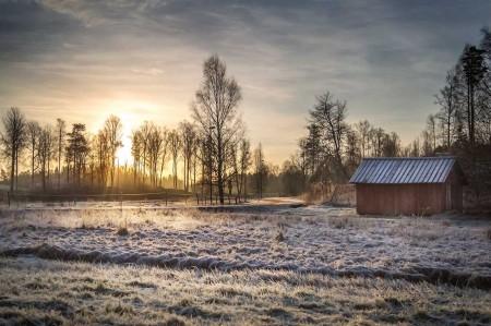 Segerbilden. Foto och copyright: Lena Landin