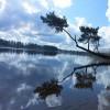 106. Hjortsjön 2. Foto: Ramona Drescher. 150808