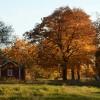 159. En fin oktoberdag vid Farstorp. Foto: Anita Blomgren. 150814