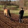 180. Vårbruk i Flahult i april med Moa och Robert. Foto: Sofie Johnsson. 150815