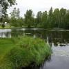 77. En rogivande plats i kommunen vid preemmacken. Foto: Lotta Holmgren. 150727