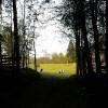 229. Båramo. September. Foto: Ragnar Alkemark. 150819