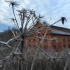 270. Frostig januaridag vid Lindefors, Hok. Foto: Mona Rothzén. 150822